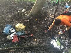 12-Env&CivSoc-World-Water-Day-LCK-Cleanup-26Mar16 (Habitatnews) Tags: mangrove capt nus worldwaterday limchukang iccs