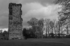 Hastings Tower, Ashby de la Zouch castle (Richard Needham) Tags: trees blackandwhite castle monochrome demolish war leicestershire civil ashbydelazouch