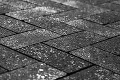 Walk the Line (Meteorseeker) Tags: light blackandwhite brick canon dark outside shadows lasvegas outdoor bricks shadowplay canon60d canonfanphotography