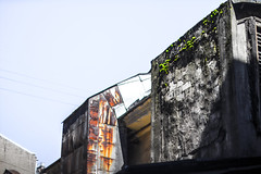 neighbors (umovskij) Tags: blue canon moss petersburg saintpetersburg canonfd   eosm