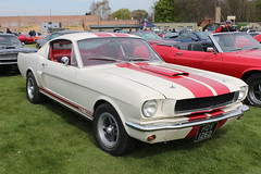 Ford Mustang GT 350 (R.K.C. Photography) Tags: uk england classic ford museum 1966 american duxford fordmustang cambridgeshire musclecar iwm gt350 canoneos100d hov126d duxfordspringcarshow2016