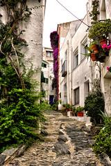 La calle de las flores (JC Arranz) Tags: espaa flores textura blanco mar arquitectura nikon ciudad nikkor turismo catalua gerona piedras cadaqus 18105 marinero d3200