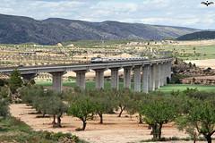 Talgo Torre del Oro sobre el Viaducto de Fosino (lagunadani) Tags: valencia puente paisaje rambla talgo 252 viaducto torredeloro camposdecultivo fontdelafiguera sonya7 corredormediterraneo alviapicasso