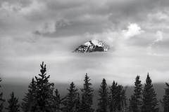 Peak Peeking (Mister Day) Tags: mountains rocky banff