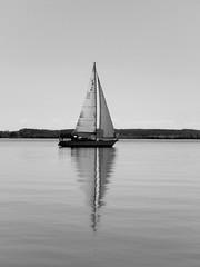 (Landanna) Tags: bw white black landscape denmark zwart wit dnemark danmark sort als hvid landschap denemarken zw landskab snderjylland zuidjutland lnsmaj