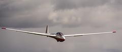 K13 (Martin Hamberg) Tags: soaring gliding k13 zweefvliegen ask13
