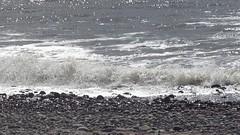 High tide at Biggar Bank (billnbenj) Tags: video surf waves spray cumbria barrow hightide walney biggarbank