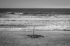 Last man standing (World-viewer) Tags: ocean wood sea sky blackandwhite bw beach water monochrome beautiful lens landscape 50mm prime coast seaside md sand marine waves minolta outdoor f14 sony horizon scenic minimal mc shore serene lonely a6000 mcmd ilce6000