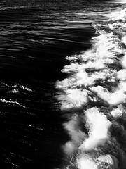 Tide & True (Natalya Karavay) Tags: ocean california sea blackandwhite seascape nature water hawaii seaside waves ebbflow oceanscape wavescape