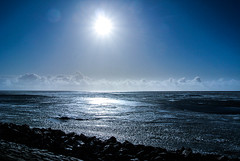 bertrappange-1669.jpg (rappange) Tags: winter horse snow holland ice landscapes country stock thenetherlands friesland ijsselmeer frysln