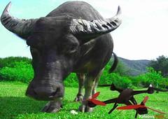 drone-fpv-oyuncak-kameral-model-ucuz-wifi (kelebekhobi) Tags: model racing wifi 4k drone oyuncak ucuz brushless quadcopter
