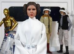 The Last Princess of Alderaan (MiskatonicNick) Tags: starwars princess figure 16 leia hottoys sixthscale playscale