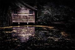 A Boathouse (Leanne Cole) Tags: autumn lake reflection landscape photographer photos australia images victoria environment boathouse fineartphotography landscapephotography environmentalphotography fineartphotographer nikond800 alfrednicholas environmentalphotographer leannecole leannecolephotography alfrednicholasgardensboathouse