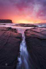 Insanity (Brian Bornstein) Tags: ocean seascape beach water sunrise waves sydney nsw bungan bunganbeach canon6d brianbornstein