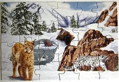 "Puzzle Book ""Big Cats"" (Leonisha) Tags: puzzle lynx bigcats snowleopard jigsawpuzzle luchs schneeleopard grosskatzen"