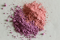 Pink and Purple Powder (eminorah) Tags: pink rose purple violet poudre macromondays beginswiththeletterp