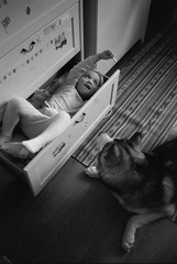 Scan-160101-0002 (Oleg Green (lost)) Tags: new blackandwhite bw dog film home 35mm children husky voigtlander year rangefinder 400 holydays rf hexar 1735 fomapan ultron