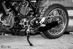 MotoPuro Scrambler Al 13 Blue (Raf Debruyne) Tags: blackandwhite bw canon eos blackwhite belgium belgique belgie noiretblanc zwartwit belgi moto motorcycle 5d antwerp ducati antwerpen scr motorrad scrambler motorfiets zwartenwit 24105mm 24105mmf4 canonef24105mmf4lusm canon24105mmf4 5dmkiii 5dmarkiii customrumble ducatiscrambler jab12 motopuro rafdebruyne debruynerafphotography debruyneraf canoneos5dmkill wwwmotopuronl wwwinstagramcomcustomrumble ducaticustom scramblercustom custommotopuro