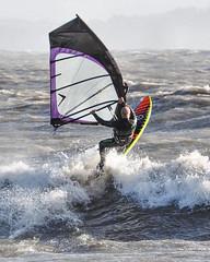 PC310622-Edit (Brian Wadie Photographer) Tags: gulls oystercatcher windsurfing kiting em1 goodlight 14xtc avonbeach canon70300lis hemgistburyhead