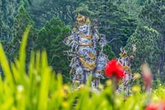 _71K4719.jpg (Pete Finlay) Tags: bali statue bedugul hindustatue balibotanicgarden