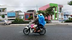 Fragile ride (Roving I) Tags: street glass transport motorcycles vietnam panels fragile loads danang logistics helmets raincoats ilobsterit