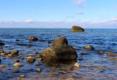 birds on rocks (jennacunniff) Tags: park new york seagulls ny man beach birds balloons island harbor rocks long state just chilling lloyd hanging camusett