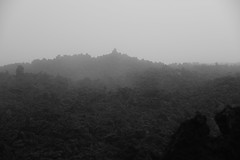 DSC_5645 (Kent MacElwee) Tags: latinamerica fog volcano highlands guatemala antigua centralamerica pacaya lavarocks activevolcano volcanpacaya