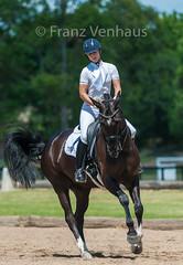 160212_Clarendon_PStG_3590.jpg (FranzVenhaus) Tags: horses sydney australia riding newsouthwales athletes aus equestrian supporters riders officials dressage spectatorsvolunteers