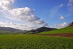 Ein erster Hauch von Frühling (DianaFE) Tags: landschaft sauerland