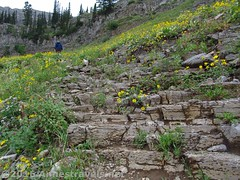 Stairway to Heaven (Anne's Travels 4) Tags: canyon wyoming wilderness tetons stairwaytoheaven grandtetonnationalpark jedediahsmithwilderness