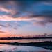 Elmhurst Creek-Arrowhead Marsh Sunset