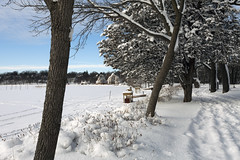 Winter landscape (Lucie Maru) Tags: winter lake snow cold minnesota landscape outdoors frozen snowcovered landscapebeauty