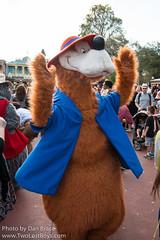 Brer Bear