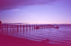 (-Alberto_) Tags: california seascape slidefilm 35mmfilm olympusxa2 e6 kodakchrome