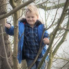 Zachary in the Trees (davepickettphotographer) Tags: park uk trees portrait tree male boys portraits children outdoors woods branch child casual boyhood cambridgeshire dayout treeclimbing contryside davepickettphotographer