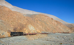 Lots of empties (david_gubler) Tags: chile train railway llanta potrerillos ferronor