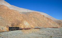 Lots of empties (david_gubler) Tags: chile train railway llanta potrerillos ferronor