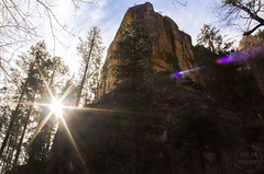 The Tower (jessieerinphotography) Tags: morning travel trees red orange sun cold tree tower nature water beauty horizontal pine creek forest canon river oak woods rocks stream bright large clarity sedona eerie canyon rapids sharp adventure formation clear winner huge chilly tall ponderosa starburst t2 brisk t2i