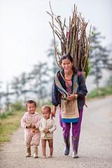 Sapa 2016 (Phc Hng) Tags: woman child vietnam farmer sapa hmong laocai vitnam locai