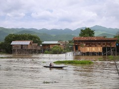Villages of rustic wooden stilt houses straddle active waterways at the Inle Lake (Bn) Tags: trip houses vacation people lake holiday mountains green art water gardens tomato season boats one boat wooden fishing fisherman hands topf50 meer long locals fishermen state burma tail leg farming nowhere paddle free floating cruising villages canoe resort full rainy canoes rowing myanmar inle balance propellers shallow shan visitors paddling birma outboard channels stilt freshwater throttle waterways hydroponic onelegged boottocht intha nyaungshwe 50faves shweinnthaflaoting aquabiotic