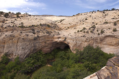Upper Calf Creek Alcove and Pool (Jeff Mitton) Tags: pool utah sandstone alcove calfcreek coloradoplateau redrockcountry wondersofnature earthnaturelife grandstaircaseoftheescalantenationalmonument
