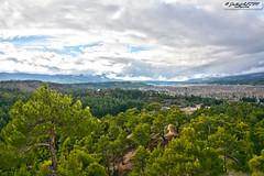 Keleki (zulkifaltin) Tags: tree green nature pine village earth hill am aa tepe keleki