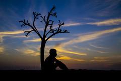 Soledad (Juan Gabriel Escobedo Robles) Tags: boy sunset naturaleza tree beach nature clouds landscape sand child playa paisaje arena nubes bluehour soledad rama condolence horaazul condolencia