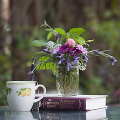A Few of my Favourite Things (Photos By Michi) Tags: pink flowers stilllife hot flower floral rose yellow garden reading book flora afternoon purple tea drink country rustic beverage cottage relaxing lavender read mug daisy