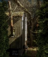 The forgotten construction trailer (KF-Photo) Tags: feld verlassen acker tbingen bauwagen zugewachsen geheimnisvoll ofenrohr verwachsen pfrondorf