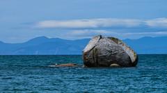Abel Tasman - 01 (coopertje) Tags: ocean park newzealand beach coast national southisland abel tasman nieuwzeeland crackedapplerock