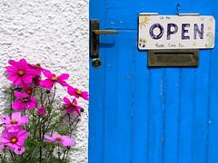 479 Plockton - Scotland (Docaron) Tags: fleur scotland couleurs porte plockton ecosse dominiquecaron