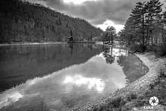 Jezero Završnica (luka.rener) Tags: pomlad završnica močerad žirovnica titovavas