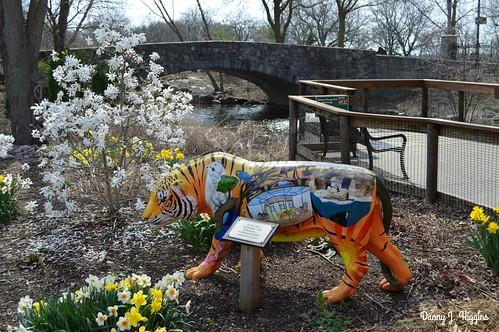 Henry Vilas Zoo, Madison, Wisconsin.       DSC_6274