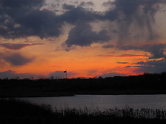 IMG_2134 (sjj62) Tags: sunset sky clouds lith s90 lakeinthehillsil